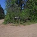 Equestrian Campground 4
