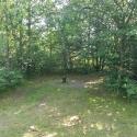 Tamarack Springs 3