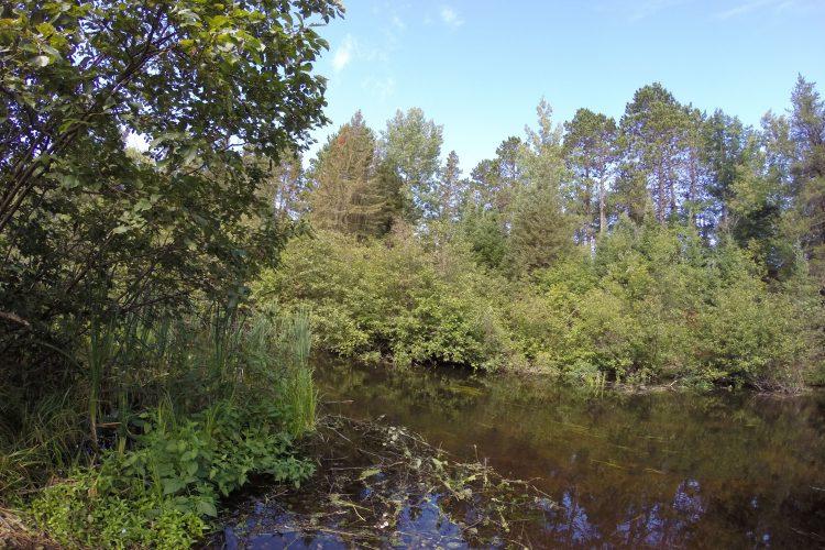 Land O' Lakes, WI