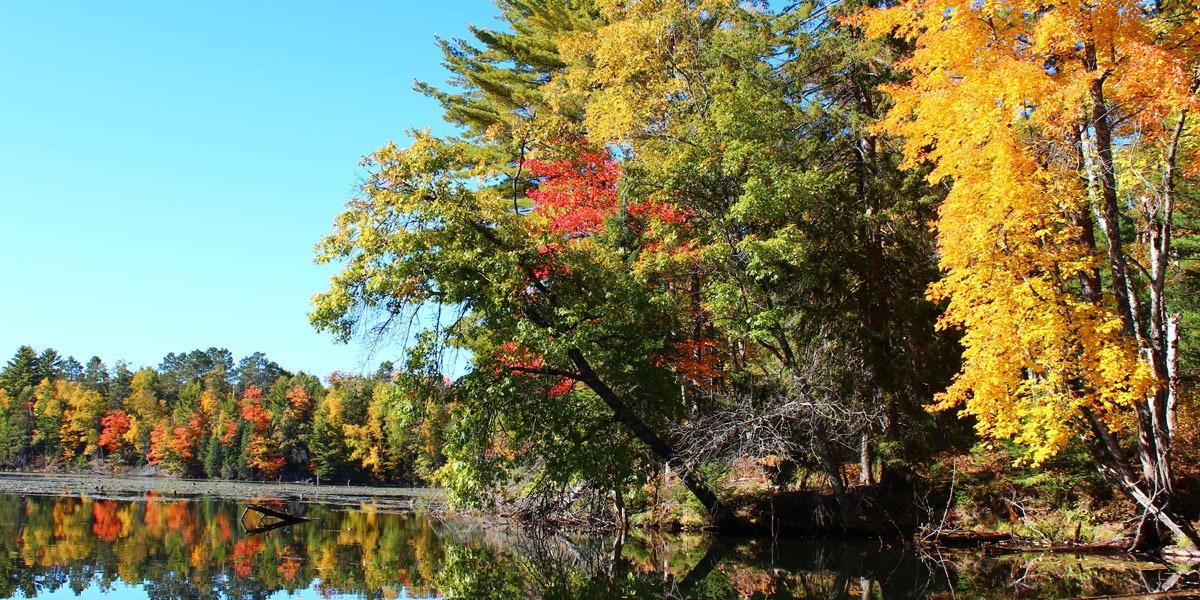 Autumn Colors In Vilas Park Lagoon >> Fall Color Report Vilas County Wisconsin