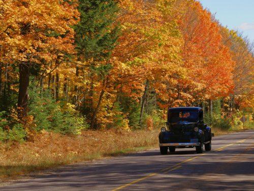 Fall color in Vilas County