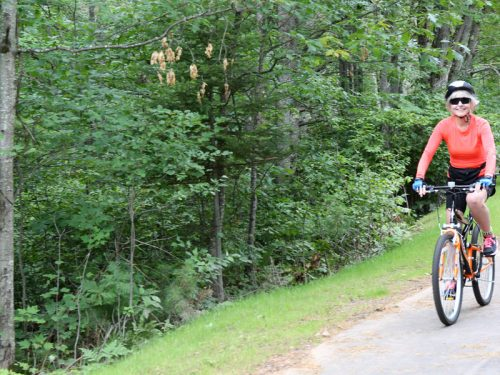 Biking in Vilas County