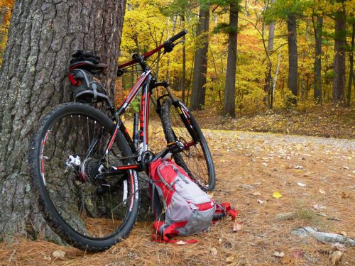 Fall biking in Vilas County