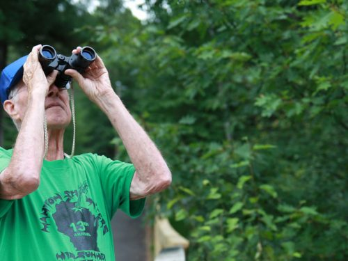 Birdwatching in Vilas County