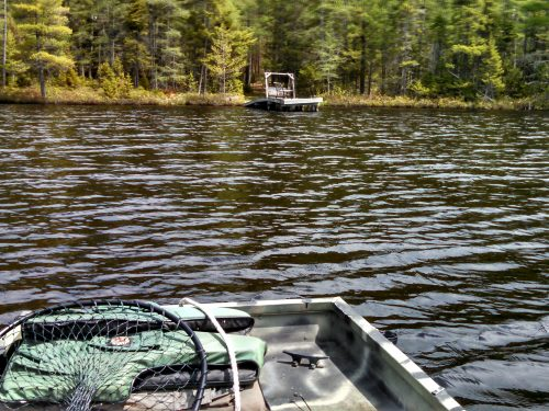 Peaceful Paradise in Vilas County