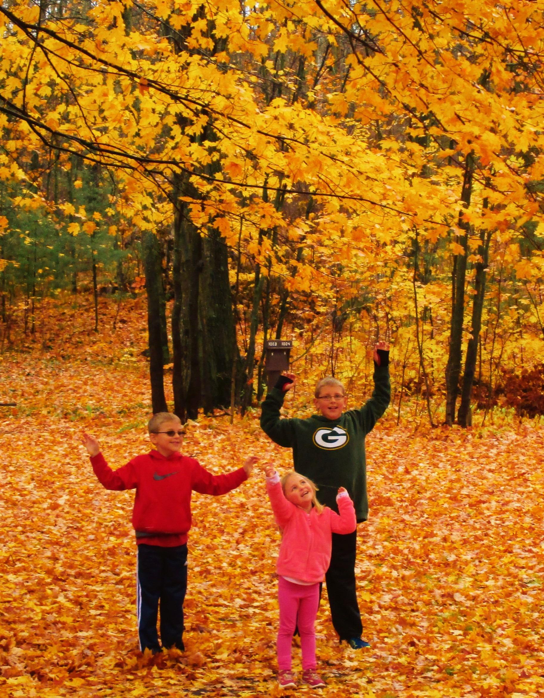 Autumn Colors In Vilas Park Lagoon >> Vilas County Fall Color Guide Vilas County Wisconsin