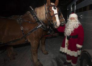 Christmas 2014 589 Brucenelson