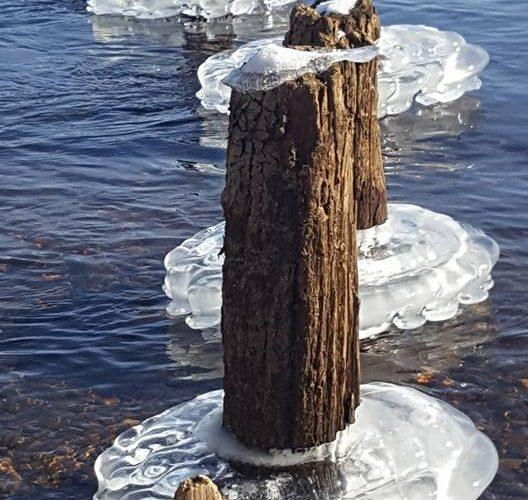 Ice Creations 3