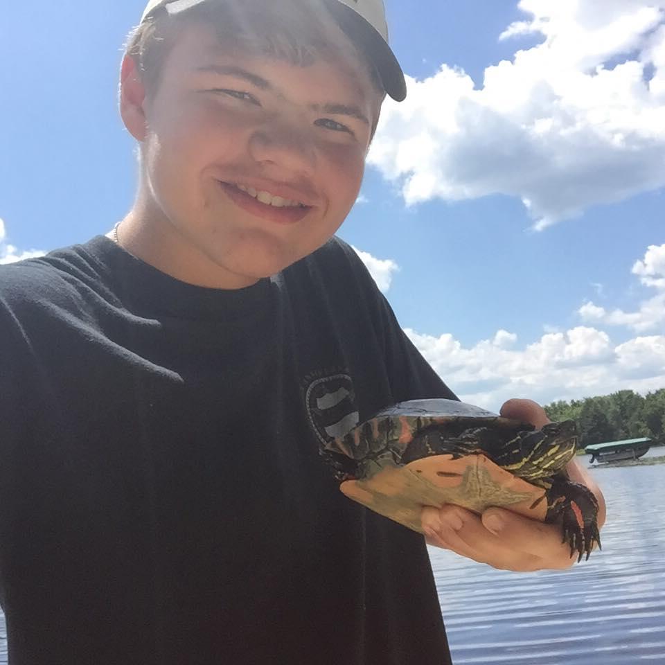 turtle on oxbow lake vilas county wi