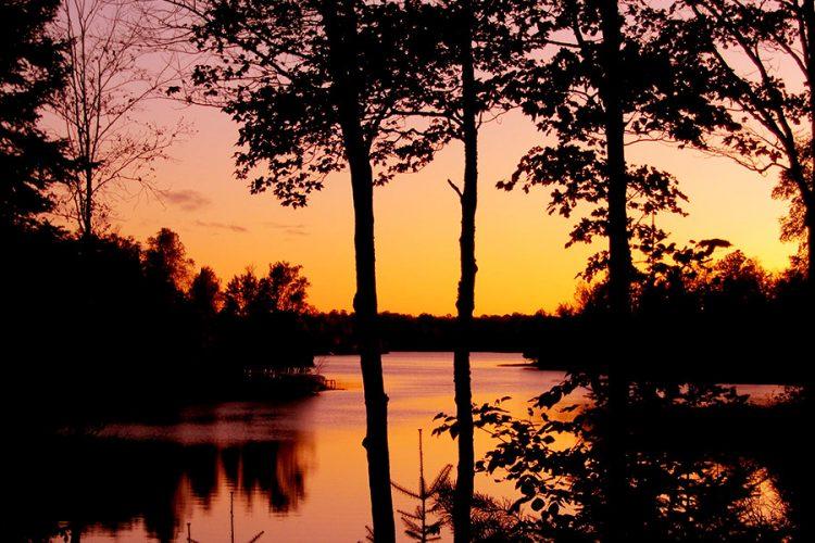 Oxbow Lake Presque Isle Vilas County Wisconsin