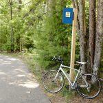 Biking The Heart Of Vilas Trail