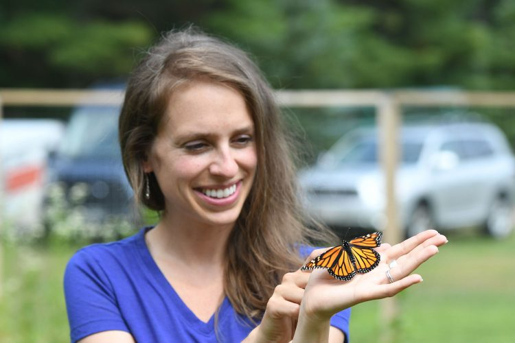 Butterflies at Lakeland Discovery Center