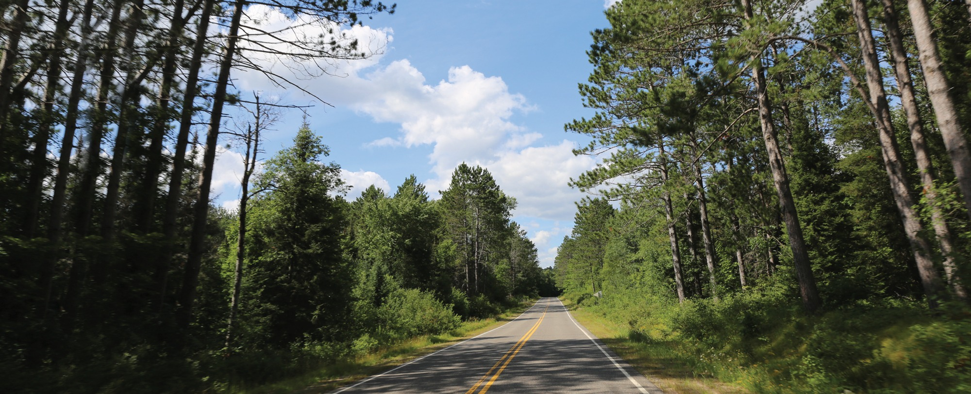 Take a road trip to Vilas County this summer!