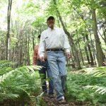 Hiking Van Vliet Hemlocks Vilas County